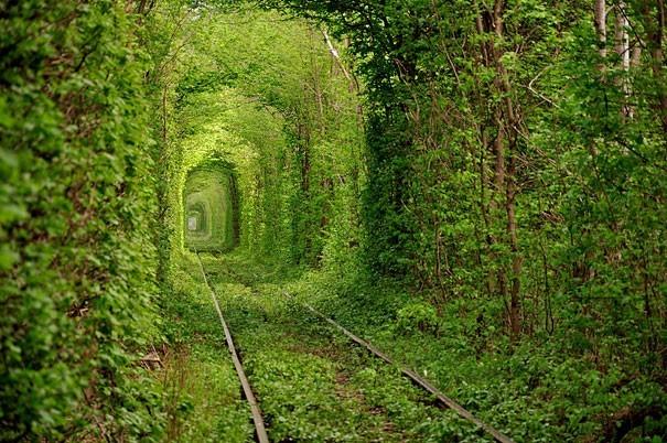 Сон про поездку на открытой платформе