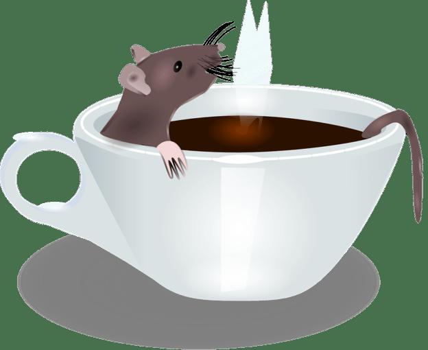 Сбывшийся сон Крысы и пламя