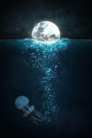 Снится вяленая рыба во сне
