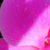 Картинка профиля echlik